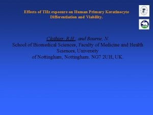 Effects of THz exposure on Human Primary Keratinocyte