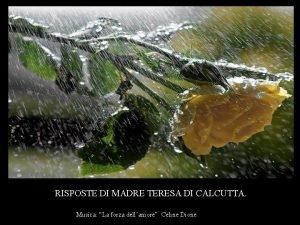 RISPOSTE DI MADRE TERESA DI CALCUTTA Musica La