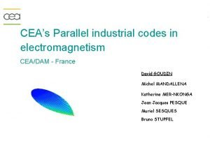 CEAs Parallel industrial codes in electromagnetism CEADAM France