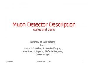 Muon Detector Description status and plans summary of