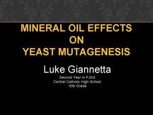 MINERAL OIL EFFECTS ON YEAST MUTAGENESIS Luke Giannetta