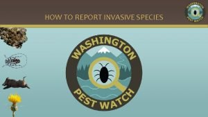 HOW TO REPORT INVASIVE SPECIES REPORTING AN INVASIVE
