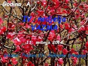 Godina A IV nedjelja VAZMA 11 svibnja 2014