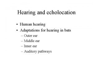 Hearing and echolocation Human hearing Adaptations for hearing