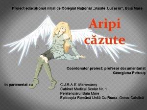 Proiect educaional iniiat de Colegiul Naional Vasile Lucaciu