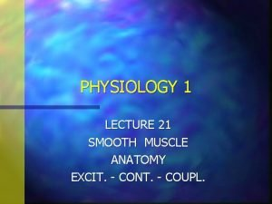 PHYSIOLOGY 1 LECTURE 21 SMOOTH MUSCLE ANATOMY EXCIT
