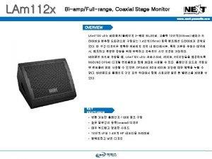LAm 112 x BiampFullrange Coaxial Stage Monitor www