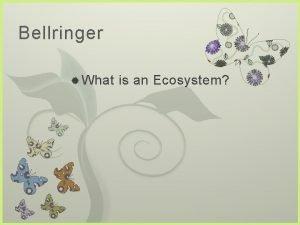 Bellringer What 7 is an Ecosystem Bellringer What