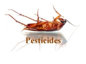 Pesticides What are Pesticides Pesticide Any substance used