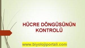 HCRE DNGSNN KONTROL www biyolojiportali com HCRE DNGSNN