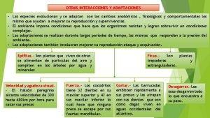 OTRAS INTERACCIONES Y ADAPTACIONES Las especies evolucionan y