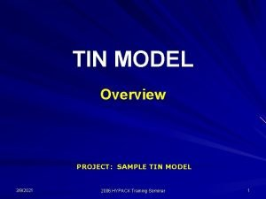 TIN MODEL Overview PROJECT SAMPLE TIN MODEL 392021