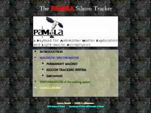 The PAMELA Silicon Tracker INTRODUCTION MAGNETIC SPECTROMETER PERMANENT