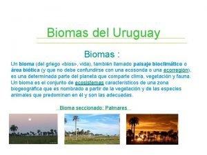 Biomas del Uruguay Biomas Un bioma del griego