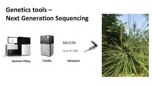 Genetics tools Next Generation Sequencing Illumina Hi Seq