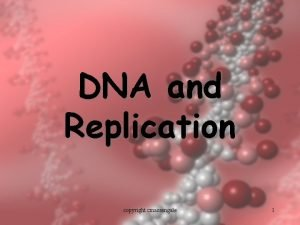 DNA and Replication copyright cmassengale 1 DNA Structure