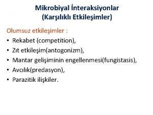 Mikrobiyal nteraksiyonlar Karlkl Etkileimler Olumsuz etkileimler Rekabet competition