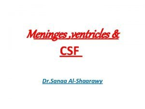 Meninges ventricles CSF Dr Sanaa AlShaarawy OBJECTIVES By
