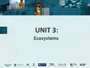 UNIT 3 Ecosystems Ecosystem What is an ecosystem