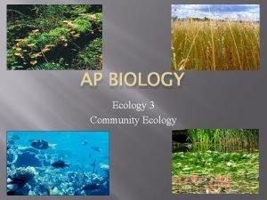 AP BIOLOGY Ecology 3 Community Ecology Community Ecology