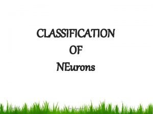 CLASSIFICATION OF NEurons 392021 HIRAL PANCHAL 1 Neurons