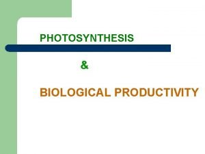 PHOTOSYNTHESIS BIOLOGICAL PRODUCTIVITY What is PHOTOSYNTHESIS Photosynthesis process
