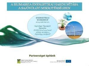 A BIOMASSZA ENERGETIKAI HASZNOSTSA A SAJVLGYI MIKROTRSGBEN ENERGETIKAI