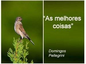 As melhores coisas Domingos Pellegrini Confira se as