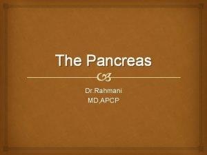 The Pancreas Dr Rahmani MD APCP The Pancreas