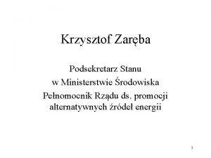 Krzysztof Zarba Podsekretarz Stanu w Ministerstwie rodowiska Penomocnik