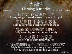 12 Flaming Butterfly As my wings spread across