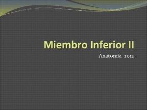 Miembro Inferior II Anatoma 2012 Pared y suelo
