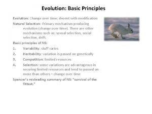 Evolution Basic Principles Evolution Change over time decent