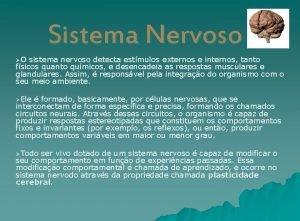 Sistema Nervoso O sistema nervoso detecta estmulos externos