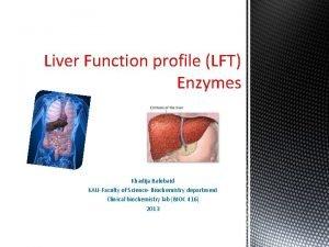 Liver Function profile LFT Enzymes Khadija Balubaid KAUFaculty