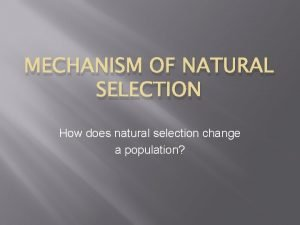 MECHANISM OF NATURAL SELECTION How does natural selection