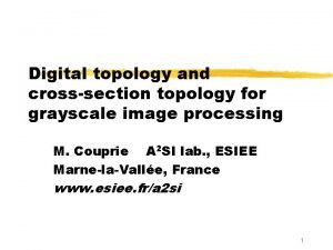 Digital topology and crosssection topology for grayscale image