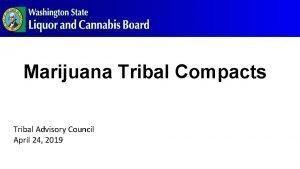 Marijuana Tribal Compacts Tribal Advisory Council April 24