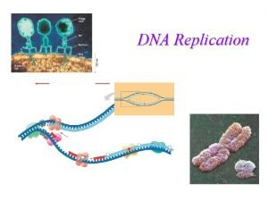 DNA Replication DNA Structure Nucleic acid Double Helix