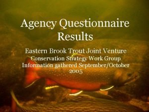 Agency Questionnaire Results Eastern Brook Trout Joint Venture