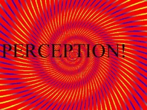 PERCEPTION Perception What is perception and how does