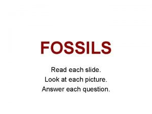 FOSSILS Read each slide Look at each picture