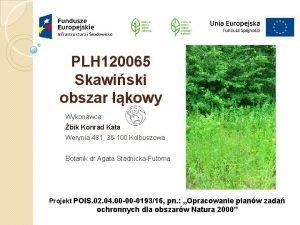 PLH 120065 Skawiski obszar kowy Wykonawca bik Konrad