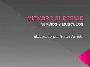 MIEMBRO SUPERIOR NERVIOS Y MUSCULOS Elaborado por Saray