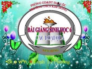 Gio vin Trnh L Phng KIM TRA MING