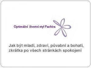 Optimln ivotn styl Pachira Jak bt mlad zdrav