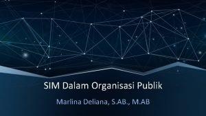 SIM Dalam Organisasi Publik Marlina Deliana S AB