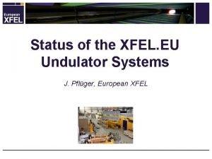 Status of the XFEL EU Undulator Systems J