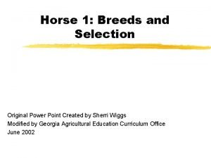 Horse 1 Breeds and Selection Original Power Point