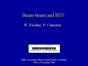 Beambeam and BTF W Fischer P Cameron RHIC